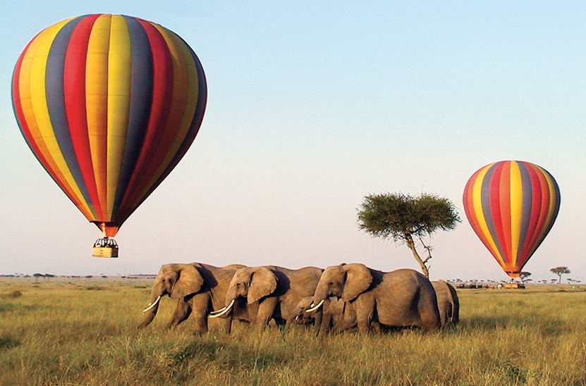 Africa-Botswana-Elephants-Balloons-2up_edited
