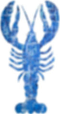 young_021517_lobster 002_web.jpg