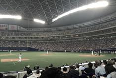中日戦 in名古屋ドーム