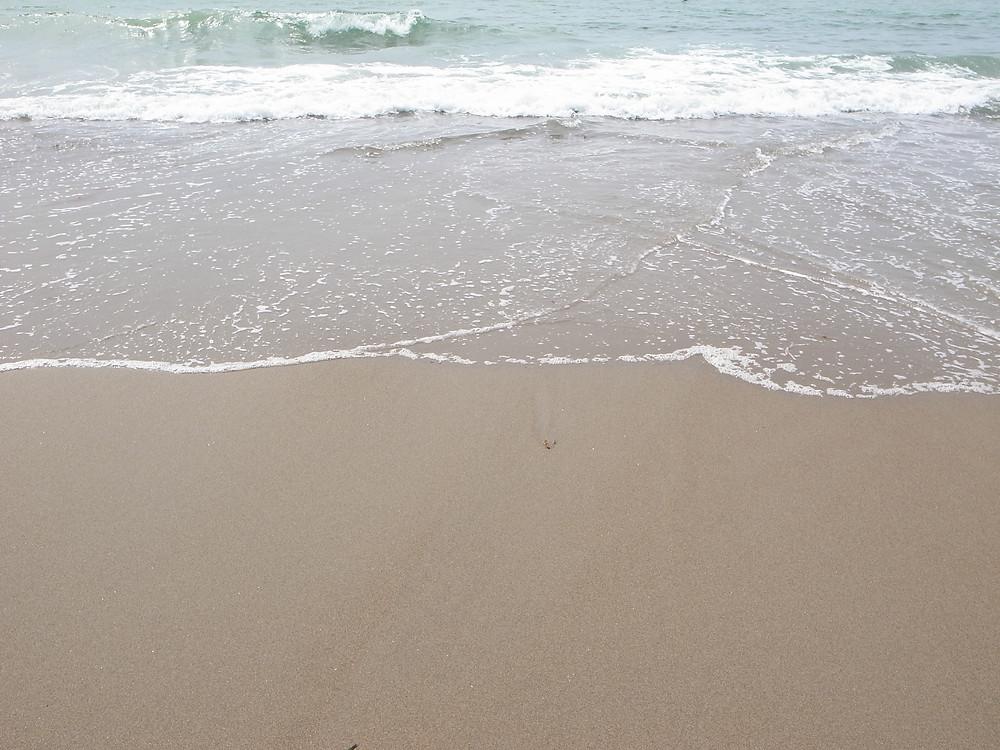 海 伊良湖 サーフィン