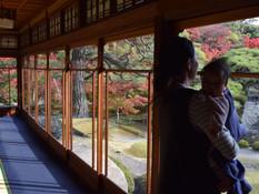そうだ、京都へ行こう