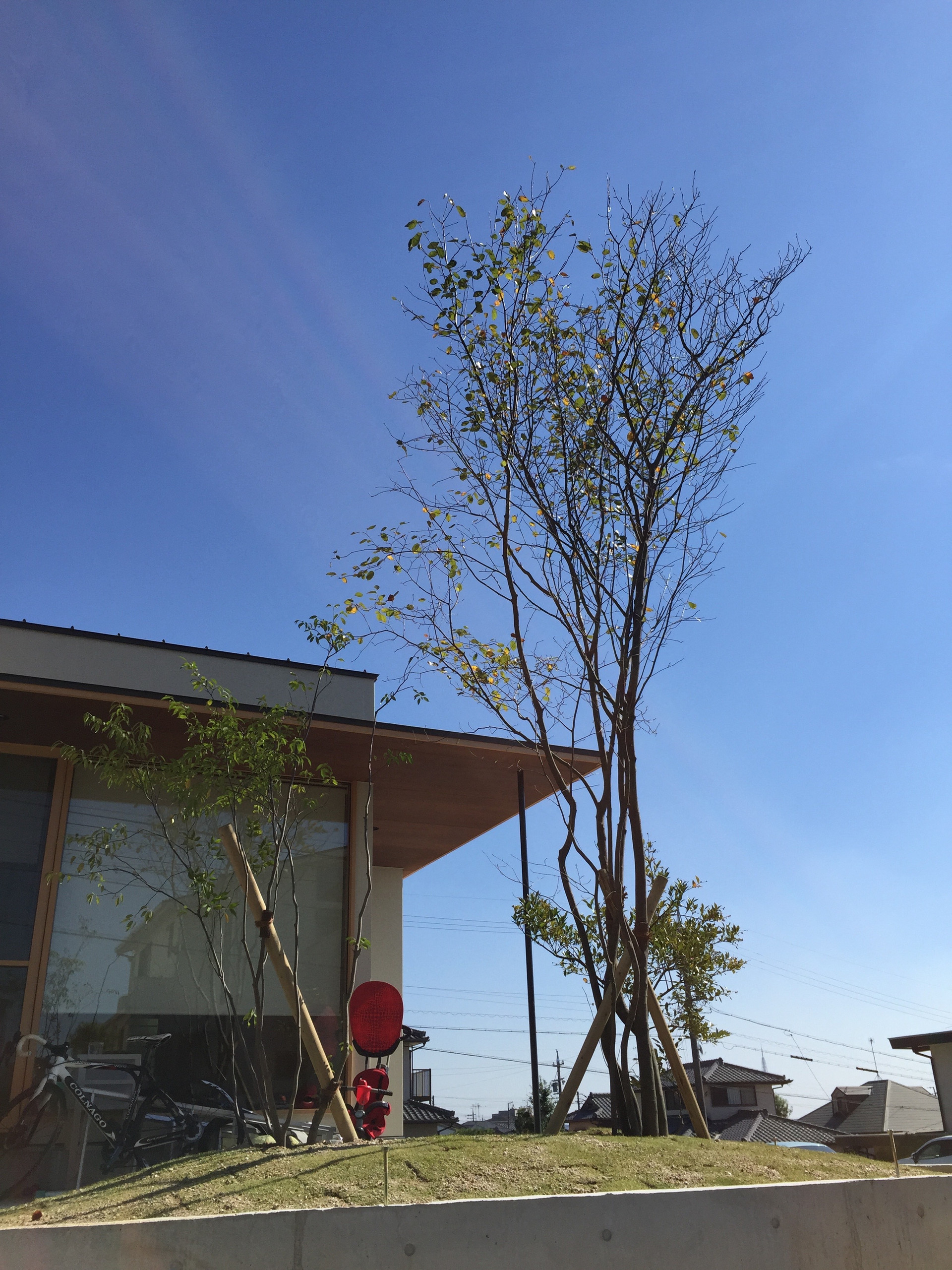 House in Owariasahi
