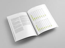 ITF Report & Accounts