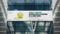 Davis Cup campaign