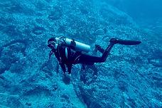 Sea Shepherd 6.jpg