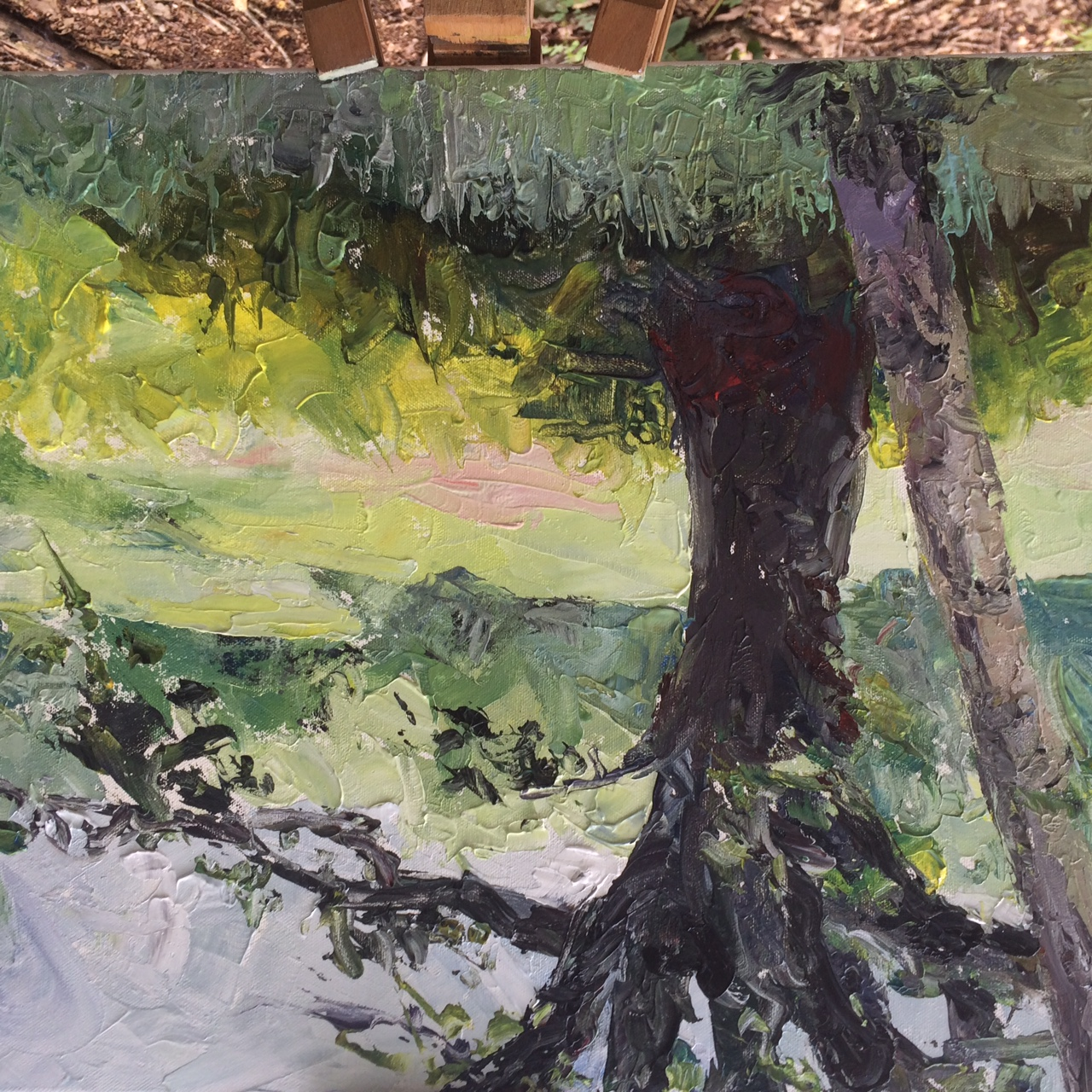 Kenwood shadows Heath Day 2016