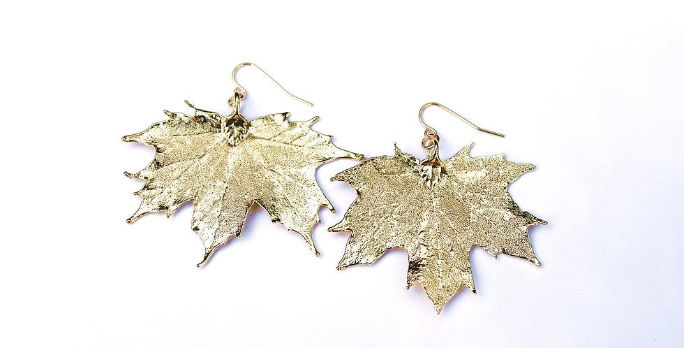 Ohrhänger Ahorn GOLD