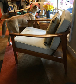 Linen replacement cushions for chair