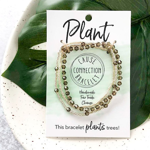 Cause Connection | Plant