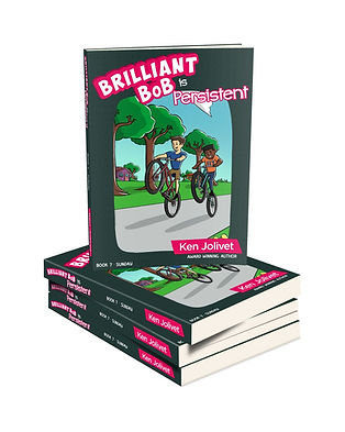 Book 7 Brilliant Bob is Persistent 3D Co