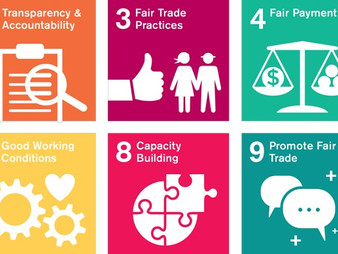 What Are the Fair Trade Principles?