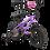 Thumbnail: SE Bronco 12