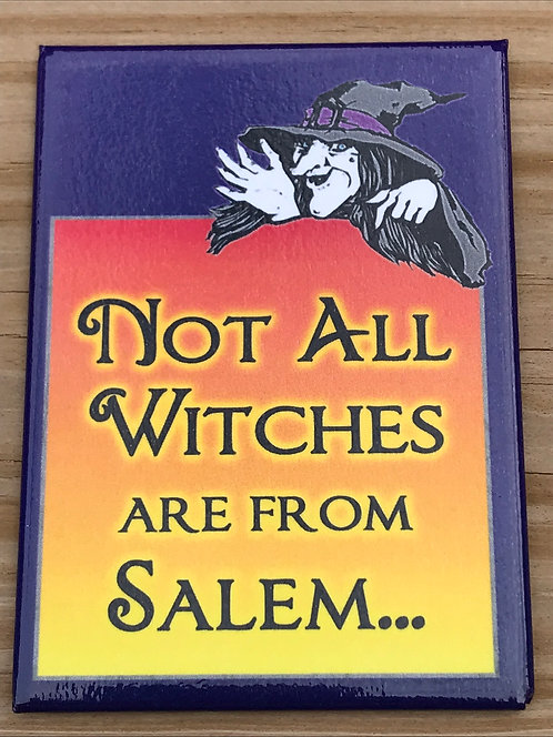 NOT ALL WITCHES ARE FROM SALEM METAL MAGNET