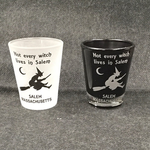 NOT EVERY WITCH SHOT GLASS