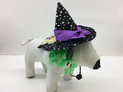 PET WITCH HAT W/ GREEN HAIR
