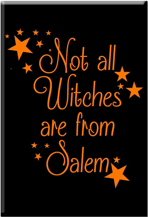NOT ALL WITCHES ARE FROM SALEM (STARS) MAGNET