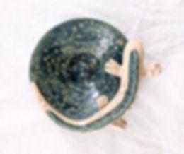 Salamander 3.jpg