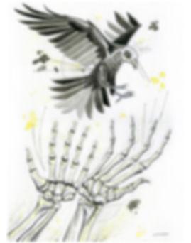2019.WC.PR.11x14.SkeletonBlackBird.jpg