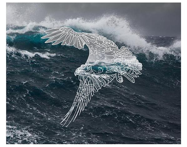 2019.PS.PR.14x11.BirdOverOcean.png