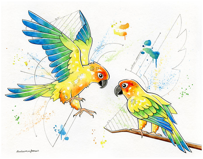 2020.WC.OR.14x11.Sun Conures.jpg