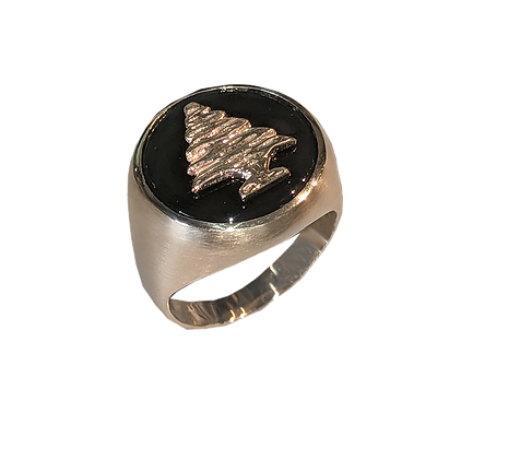 14K Yellow Gold Cedar Onyx Brushed Gold Ring
