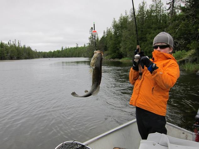 bass fishing Ontario