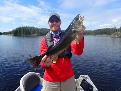 Trophy Canadian Walleye
