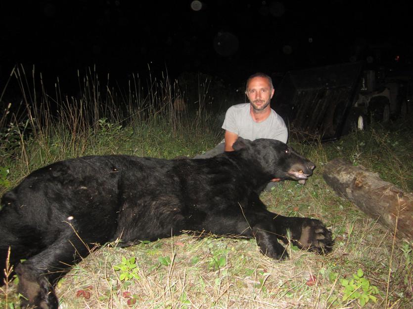 Trophy bear hunts in Ontario