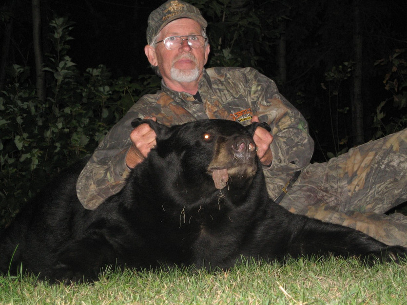 Trophy black bear hunt