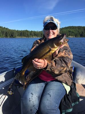 big walleye Canada