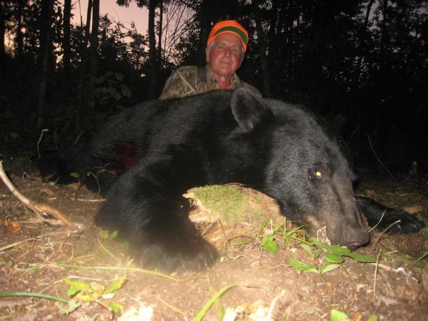 Archery bear hunt