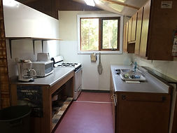 Trout Lake kitchen