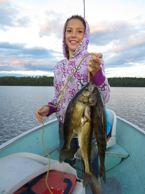 walleye in Ontario