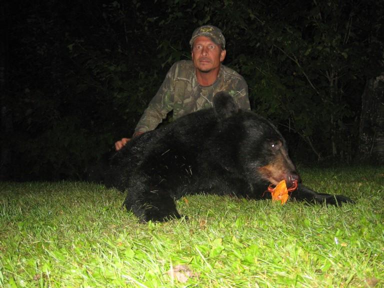 Ontario archery bear