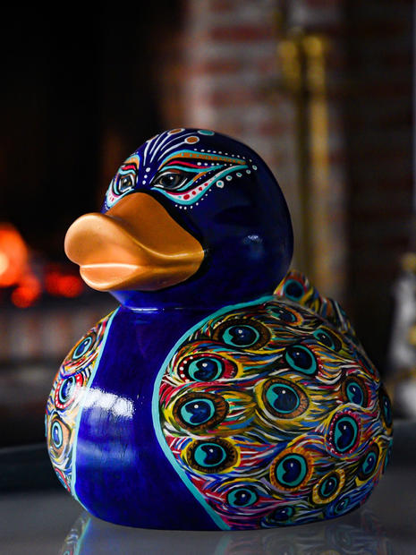 Peacock Duck