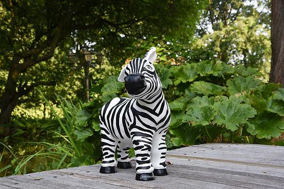 elena-gontcharova-zebra-donkey-donkeypar