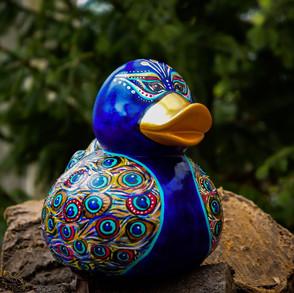 """Peacock duck"""