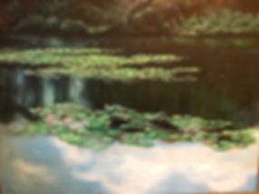 LAKE LANCASTER OMA.jpg