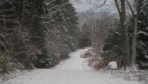 A seasonal snow