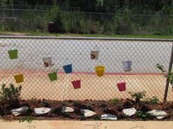 Buckets on fence