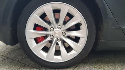 Alloygator Velg Bescherming Tesla Zilver