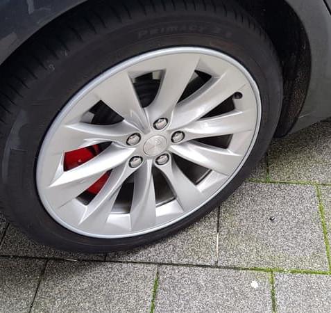 Tesla Velg Bescherming Alloygator Zilver
