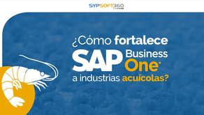 ¿Cómo fortalece SAP Business One a industrias acuícolas?