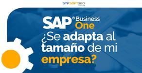 ¿SAP Business One se adapta al tamaño de mi empresa?