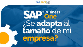¿SAP Business One se adapta al tamaño de mi empresa?