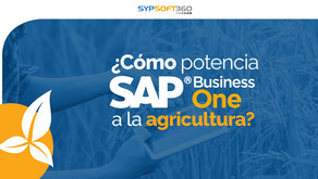 ¿Cómo potencia SAP Business One a la agricultura?