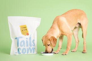 Tails-Lab-IDweb.jpg