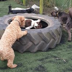Sniff work in the tyres