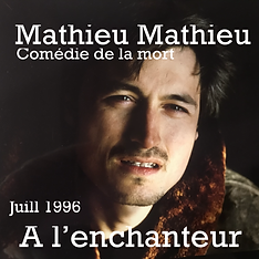 Mathieu_à_l'enchanteur.HEIC