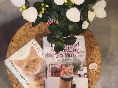 A Streetcat Named Bob
